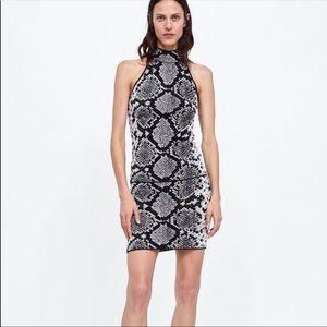 Zara knitted snake print skirt